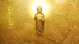 Niệm A Di Đà Phật (Âm Việt, Theo Tịnh Tông Học Hội) (Hình Động, Rất Hay)