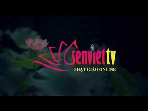 Tin Phật giáo Video SenvietTV 166