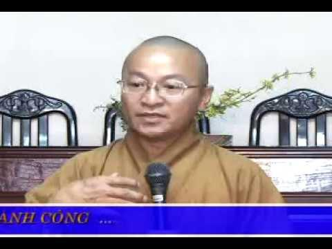 Vấn đáp: Để Phật Sự Được Thành Công (23/06/2009) video do Thích Nhật Từ giảng