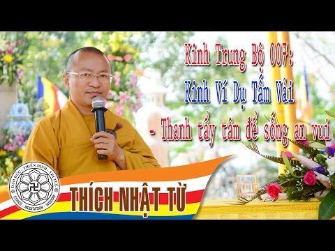 Kinh Trung Bộ 7: Thanh tẩy tâm để sống an vui
