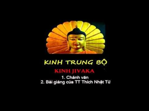 Kinh Trung Bộ - Kinh Jivaka. MP3