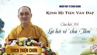 """Kinh Mi Tiên: Câu 39. Lại hỏi về """"chú Tâm"""" - Thích Thiện Chơn"""