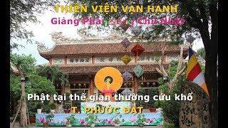 Phật tại thế gian thường cứu khổ