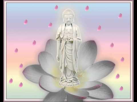 Có Thế Giới Cực Lạc, Có Phật Hiệu A Di Đà Hiện Đang Thuyết Pháp