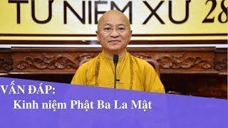 Vấn đáp: Kinh niệm Phật Ba La Mật | Thích Nhật Từ