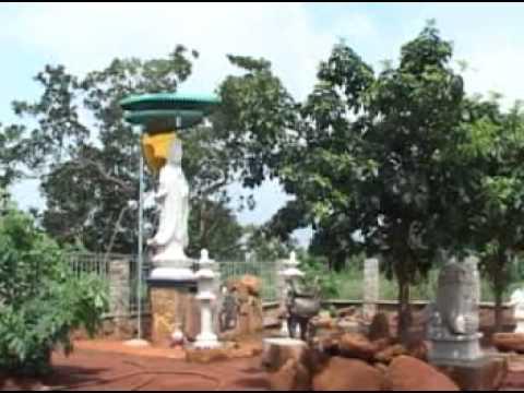 Chùa Đức Hạnh: Ngôi chùa có hai kỷ lục Việt Nam