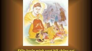 KINH PHÁP CÚ 23 - Phẩm VOI RỪNG - Nhạc Võ Tá Hân - Thơ Tuệ Kiên