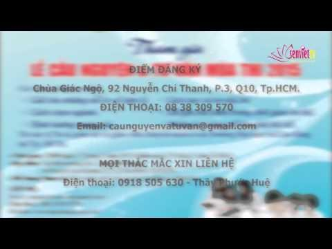 Tin Phật giáo Video SenViet TV 164