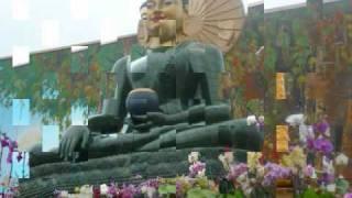 Nhạc: Khai Thị Niệm Phật