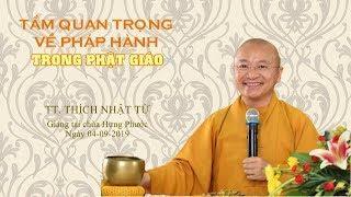 Tầm quan trọng về pháp hành trong Phật giáo - TT. Thích Nhật Từ