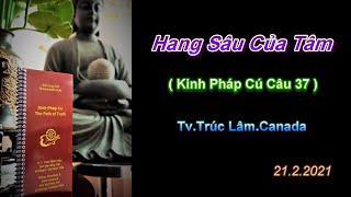 Hang Sâu Của Tâm - Thầy Thích Pháp Hòa (Tv.Trúc Lâm.Ngày21.2.2021)