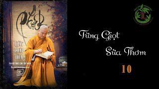 Từng Giọt Sữa Thơm 10 - Thầy Thích Pháp Hòa ( Tv Trúc Lâm, ngày 27.4.2020 )