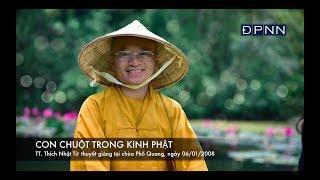 Con chuột trong Kinh Phật (06/01/2008) video do Thích Nhật Từ giảng