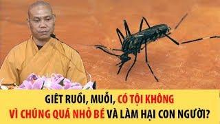 Giết chết chuột gián muỗi có bị báo ứng không vì chúng gây hại cho con người