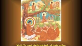 KINH PHÁP CÚ 17 - Phẩm PHẪN NỘ - Nhạc Võ Tá Hân - Thơ Tuệ Kiên