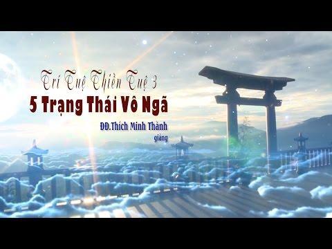 Trí Tuệ Thiền Tuệ 3 - 5 Trạng Thái Vô Ngã