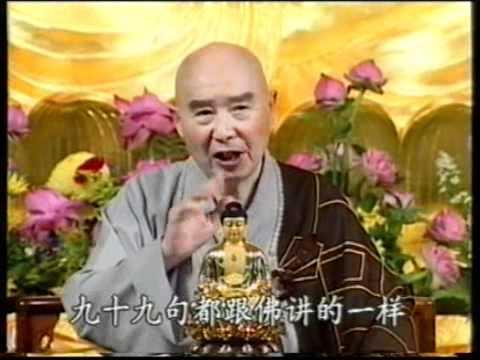 Bảo Liên Phật Quang (Tập 316, Trích Kinh Vô Lượng Thọ)