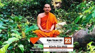 KINH TRUNG BỘ 23: KINH GÒ MỐI (Vammikasuttam)