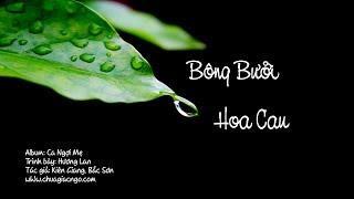 Bông bưởi hoa cau - Hương Lan
