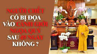 NGƯỜI CHẾT có bị đọa vào CẢNH GIỚI NGỌA QUỶ sau 49 ngày không ? | TT. Thích Nhật Từ