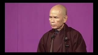Tánh Tướng Biệt Quán [Lâm Tế Ngữ Lục 03]   TS Thích Nhất Hạnh(09-10-2003, Xóm Thượng, Làng Mai)