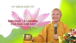 Vấn đáp: Có phải đạo Phật là nhánh của đạo Cao Đài không ? | TT. Thích Nhật Từ
