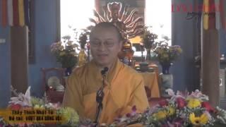 Vượt Qua Sống Vội (20/01/2013) video do Thích Nhật Từ giảng
