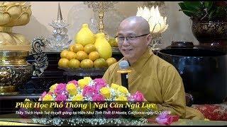 Thích Hạnh Tuệ | Phật Học Phổ Thông - Ngũ Căn Ngũ Lực