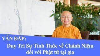 Vấn đáp: Duy Trì Sự Tỉnh Thức về Chánh Niệm đối với Phật tử tại gia | Thích Nhật Từ