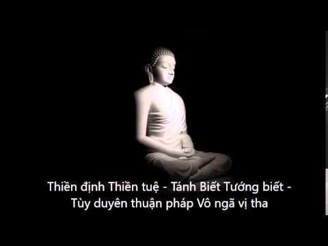 Hỏi đáp: Thiền định & Thiền tuệ - Tánh Biết & Tướng biết - Tùy duyên thuận pháp - Vô ngã vị tha