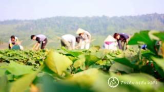 Ta Đang Làm Gì Chốn Này - 27.01.2013