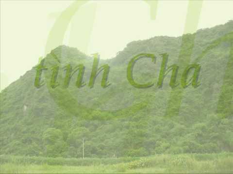 TÌNH CHA