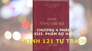 Tăng Chi Bộ Kinh | Chương 4 Pháp | Phẩm Sợ Hãi | Kinh 121 Tự Trách