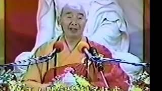 Kinh Vô Lượng Thọ (19-37) Pháp Sư Tịnh Không
