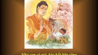 KINH PHÁP CÚ 11 -  Phẩm GIÀ YẾU - Nhạc Võ Tá Hân - Thơ Tuệ Kiên