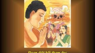 KINH PHÁP CÚ 16 - Phẩm HỶ ÁI - Nhạc Võ Tá Hân - Thơ Tuệ Kiên
