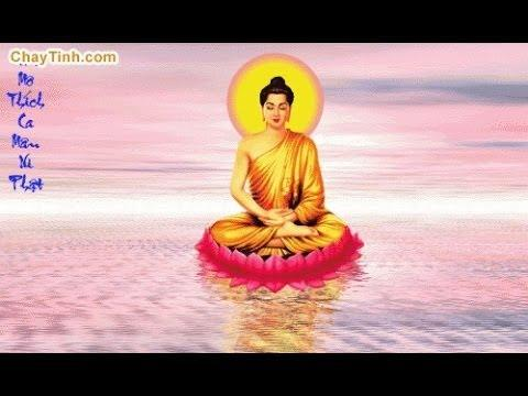 Sự Quyết Tâm Của Đức Phật