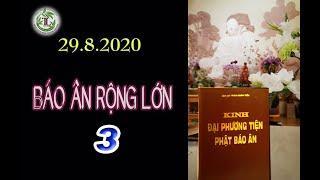 Báo Ân Rộng Lớn 3 - Thầy Thích Pháp Hòa (Tv Trúc Lâm, Ngày 29.8.2020)