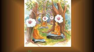 KINH PHÁP CÚ - 02 Phẩm TINH CẦN - Nhạc Võ Tá Hân - Thơ Tuệ Kiên