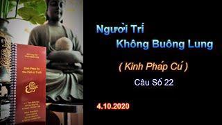 Người Trí Không Buông Lung  (Kinh PC 22) Thầy Thích Pháp Hòa.Tv Trúc Lâm.Ngày 4.10.2020
