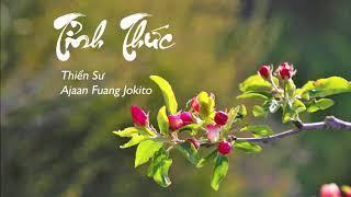 Tỉnh Thức  - Thiền Sư Ajaan Fuang Jokito