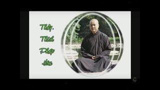 The Triple Gems  - Thay. Thich Phap Hoa ( Nov. 22, 2008)