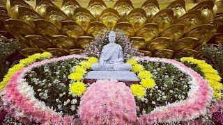 """Tụng Kinh """"Nương tựa ai khi Phật qua đời"""" tại Chùa Giác Ngộ, ngày 05-05-2021"""