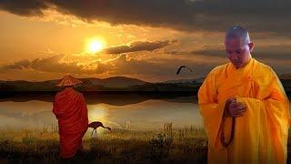 Phật Tại Thế Gian