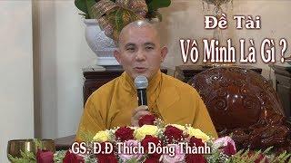 Vô Minh Là Gì ?