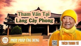 Tham vấn tại làng Cây Phong
