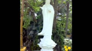 CUỘC ĐỜI CỐ HOÀ THƯỢNG THÍCH THIỀN TÂM  1/2