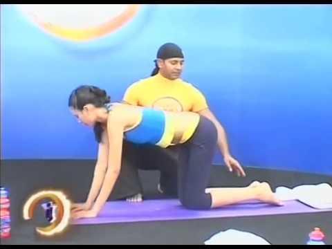 Yoga cho mọi người - YOGA MASTER KAMAL  - Phần 2