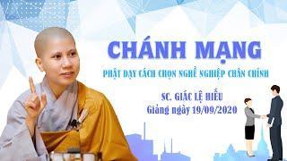 Chánh mạng - Phật dạy cách chọn nghề nghiệp chân chính - SC. Giác Lệ Hiếu