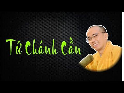 Bước đầu học Phật kỳ 28: Tứ chánh cần